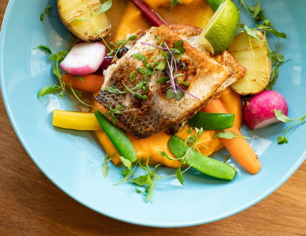 FISH FOOD HEALTH