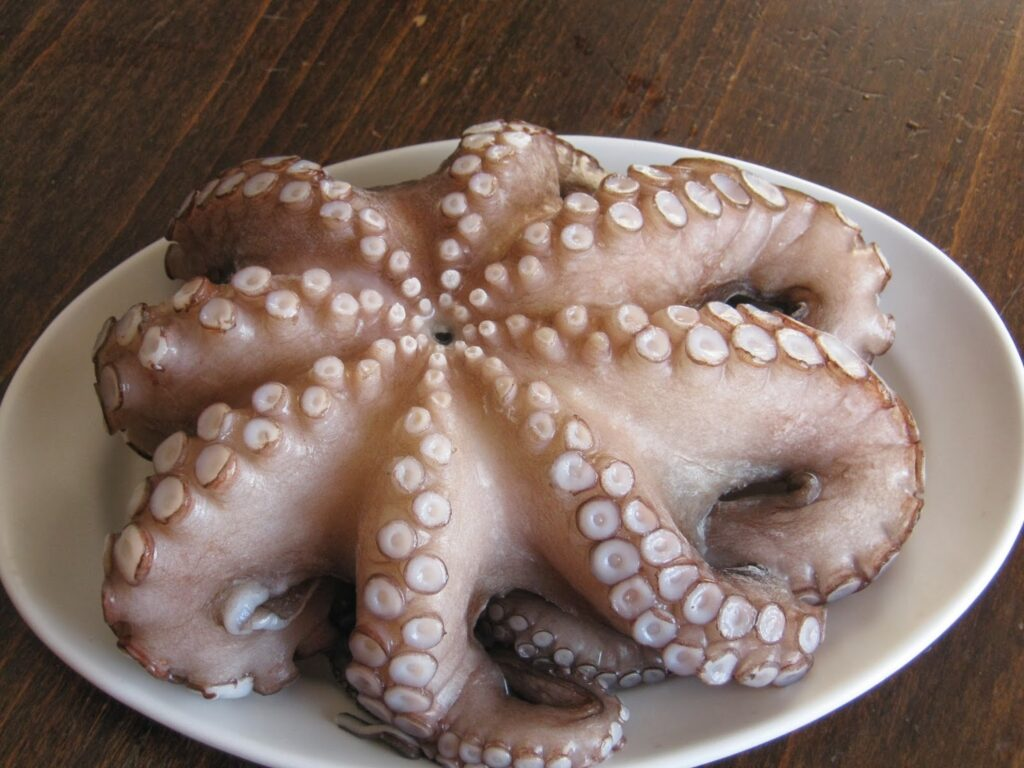 OCTOPUS IN A PLATE